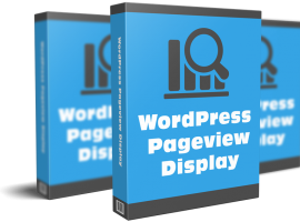 WordPress Pageview Display