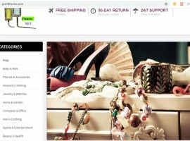 W4: Link to a Dropshipping Web Store